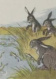 Заєць і жаба