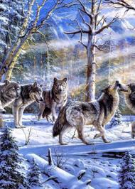 Вовки-колядники