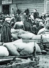 Голодомор 1932-1933: Причини, жертви, злочинці