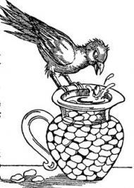 Як ворона дістала зі дзбанка води