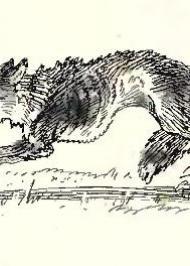 Війна пса з вовком