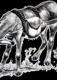 Осел і пес