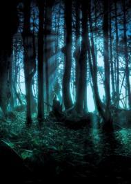 Темний ліс